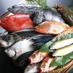 【魚屋のアマゾン】魚をipadで注文?八面六臂って何?