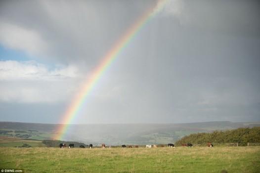 rainbowatpeakdistrick