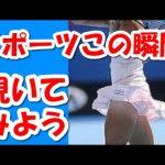 【決定的瞬間】6秒動画 海外面白い映像9 スポーツ面白爆笑