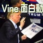 【笑えるVine】海外の面白い動画集 Funny videos