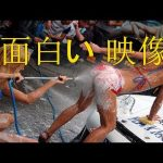 [面白い動画 セクシーな] – 面白い動画 面白い 映像 面白い動画 日本 面白い 映像 アニメ 40