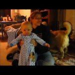 お笑い – おもしろ – 新しい面白い動画2016★面白い動画★最高の面白い赤ちゃん&犬2016