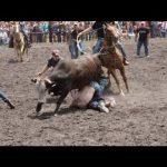 【動物】最も恐ろしい闘牛祭ベスト面白い動画が面白いクレイジーブル失敗を笑うしないようにしよう