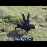 笑える – おもしろ – 最高の面白い動画|  ポルトガルの面白い闘牛祭|  面白い狂った雄は人々#1を攻撃する