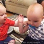 【赤ちゃんおもしろ】 面白い 動画 日本  | 面白 動画 #1